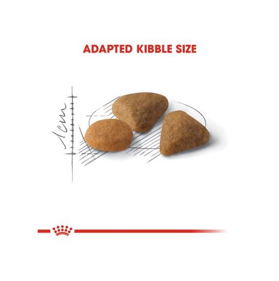عکس دانه غذای خشک گربه رویال کنین مدل Savour Exigent وزن 2 کیلوگرم