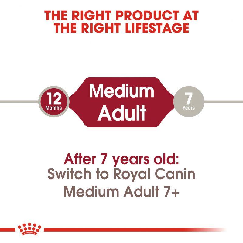 عکس توضیحات غذای خشک سگ رویال کنین مدل Medium Adult وزن 4 کیلوگرم