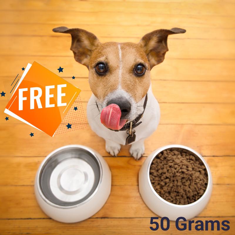 عکس تبلیغاتی نمونه 50 گرمی غذای خشک سگ با کیفیت ایرانی